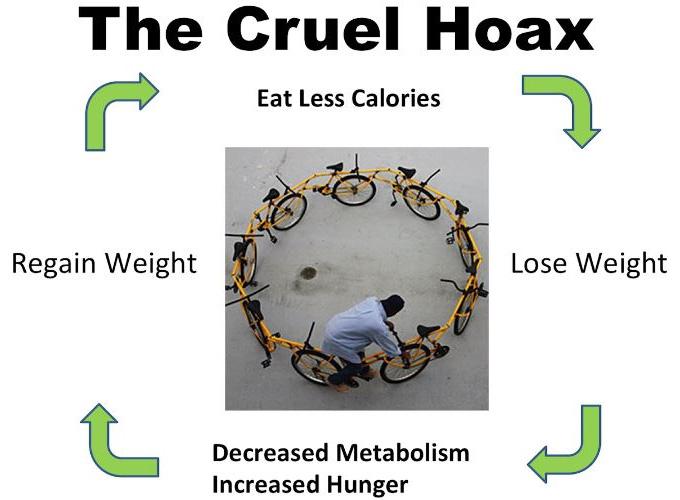 Сучасні погляди на ожиріння